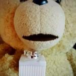 TEDからのプレゼント